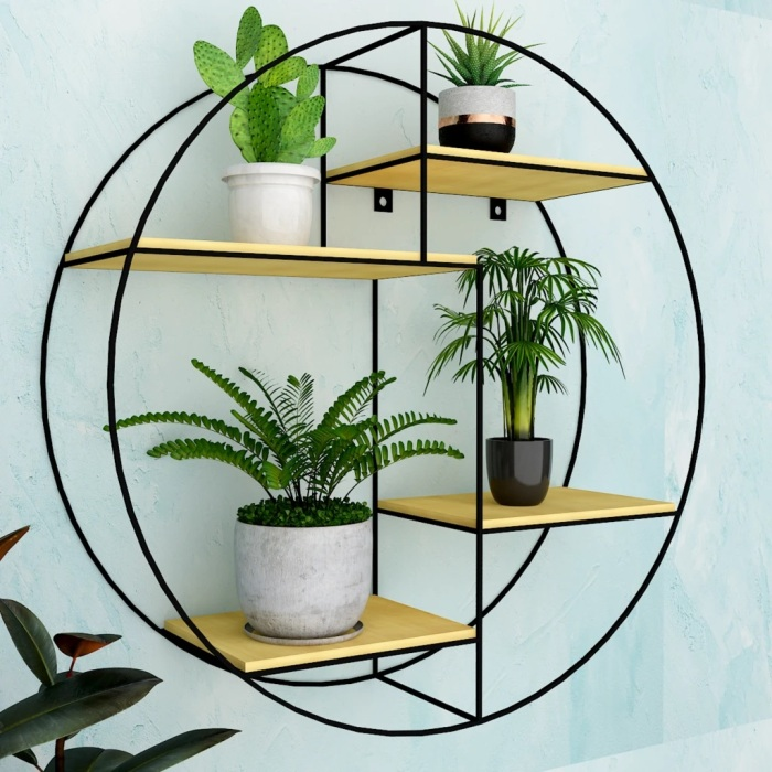Things to Consider Before Buying Wall Hanging Planters