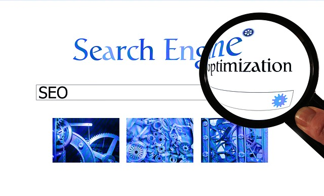 Find out the Best SEO Company In UAE