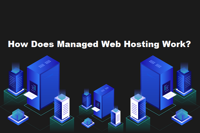 Servers showing How Does Managed Web Hosting Work?
