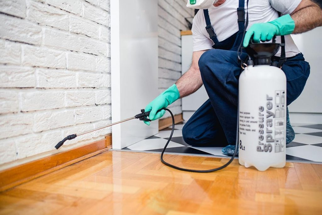 6 Tips to Get Rid of Pests on Commercial and Industrial Properties